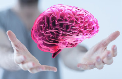 neuromarketingmoda