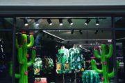 Dolce e Gabbana cactus