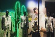 cactus visual merchandising