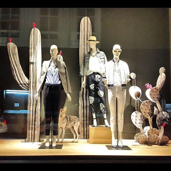 cactus visual merchandising 3