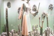 cactus visual merchandising 5