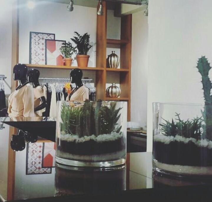 cactus visual merchandising 7