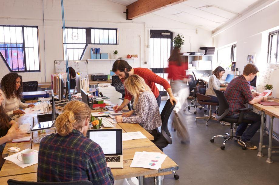 organograma equipe visual merchandising 2